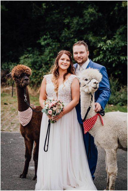 Hochzeitsfotograf Bochum freie Trauung Kemnader See Brautpaarshooting mit Alpakas